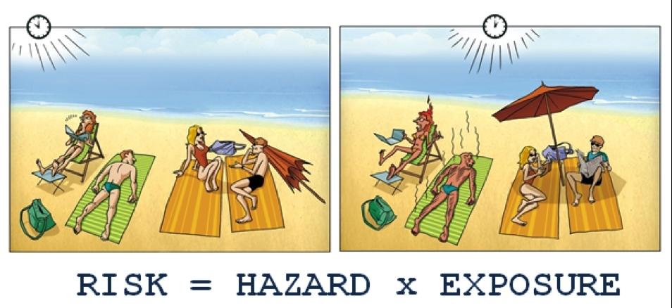 risk vs hazard plasticisers information center